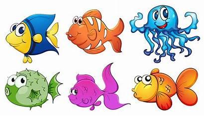 Sea Different Creatures Kinds Five Illustration Background