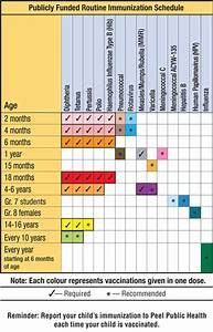 Dance Net What Is The Typical Vaccination Schedule And