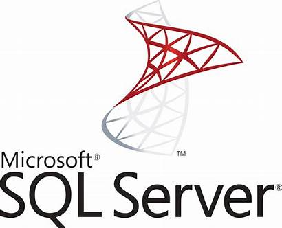Sql Server Microsoft Clipart Downloads