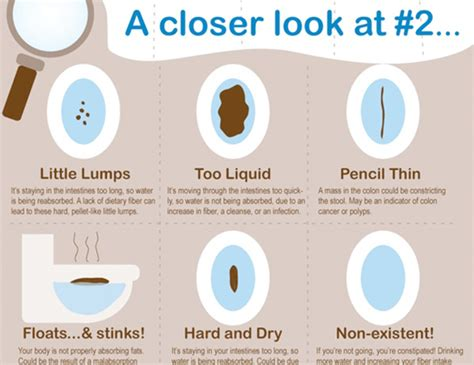 Pencil Shaped Bowel Movements Pictures To Pin On Pinterest