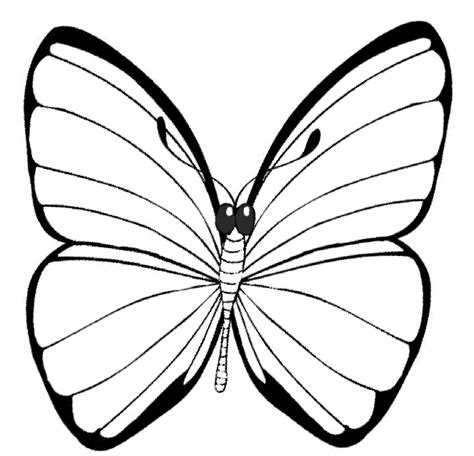 flying butterfly coloring pages animal butterfly