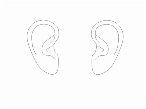 Template For Ears by Ear Outlines Clip