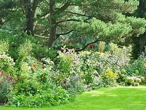 Gartengestaltung Unter Bäumen : b ume erfolgreich unterpflanzen garden garten baum und stauden ~ Yasmunasinghe.com Haus und Dekorationen