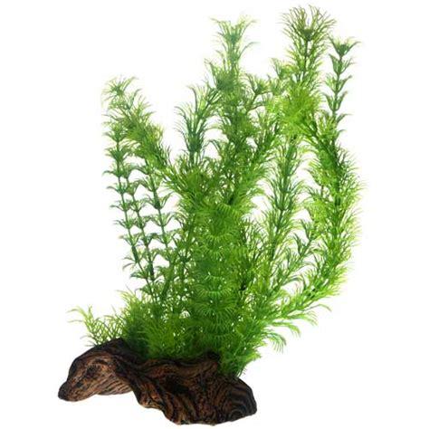 hobby flora root 3 l plante artificielle sur support c 233 ramique pour la d 233 coration de votre
