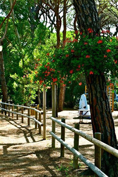 cieloverde camping village grosseto