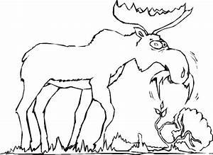 Elch Vorlage Kostenlos : elch am fressen ausmalbild malvorlage comics ~ Lizthompson.info Haus und Dekorationen