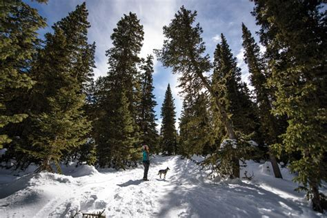 WALKING IN A WINTER WONDERLAND DISCOVER TAOS
