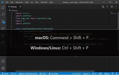 Python Vscode Notebook Visual Code Studio Jupyter