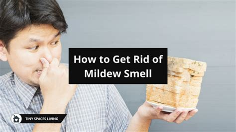 how to get rid of musty smell in kitchen cabinets a complete guide on how to get rid of mildew smell tiny 9959