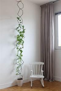 Rankhilfe Für Zimmerpflanzen : rankhilfe f r maracuja pflanzen balkon pinterest pflanzen gr ner garten und gartentipps ~ Yasmunasinghe.com Haus und Dekorationen