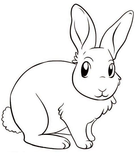 Rabbit Drawing Free Coloring Pages Of How To Draw Rabbits