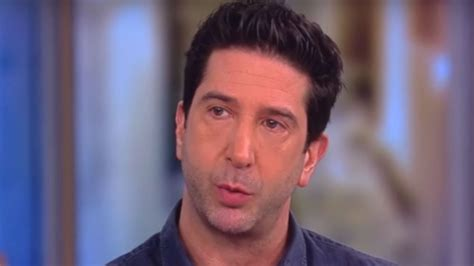 David schwimmer weighs in on friends' ross and rachel break debate: David Schwimmer: 'Terrible' Mistake to Lump in Al Franken With 'Harvey Weinsteins of the World'