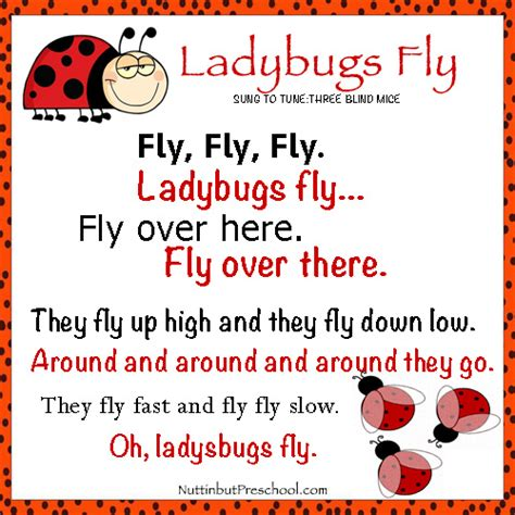 fly ladybugs fly children s song nuttin but preschool 176 | Fly Ladybugs Fly Preschool Kids Song 1