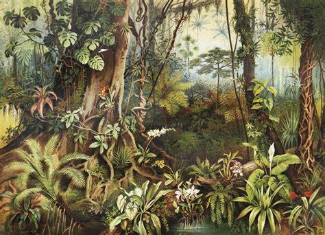 buy vintage jungle wall mural   shipping