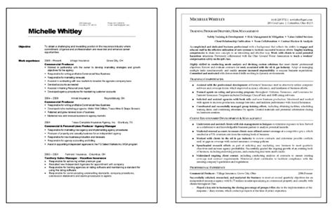 Insurance Trainer Resume by Corporate Trainer Resume Exle