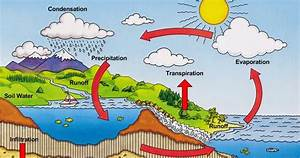 Serenity Valley Academy Browncoats  Ecology  The Water Cycle