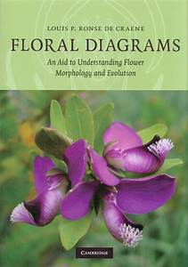 Diagrams An Aid To Understanding Flower Morphology And Evolution