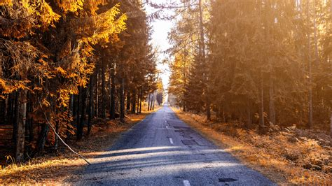Autumn 4k Uhd Wallpapers by Wallpaper 3840x2160 Autumn Road Forest