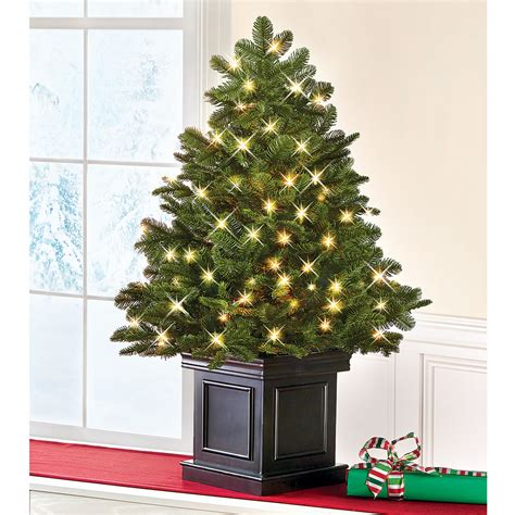 table top christmas trees with lights the world 39 s best tabletop prelit fraser fir hammacher