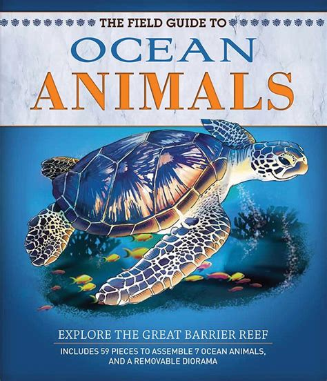 559 Best Images About Learning  Themes  Ocean Life On