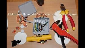 Verteilerdose Anschließen Anleitung : elektroinstallation das verdrahten einer abzweigdose youtube ~ Watch28wear.com Haus und Dekorationen