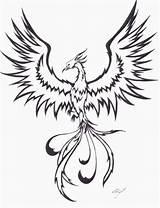 Phoenix Tattoo Outline Flying Bird Tribal Tattoos Tattoostime Gemerkt sketch template