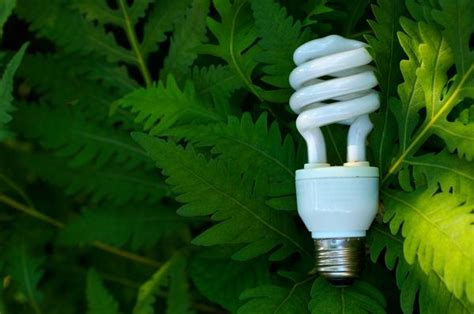green 187 how do energy saving light bulbs work
