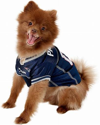 Dog Pets England Patriots Jersey Chewy Mesh