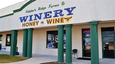 Image result for fiddlers ridge winery lake wales