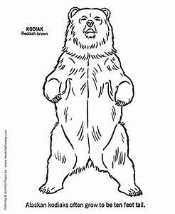 Bear Standing up Clipart (35+)