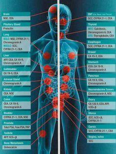examples  tumor markers   medical laboratory science oncology nursing nursing