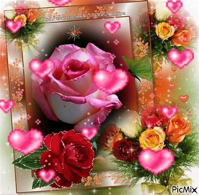 Flores Rose Picmix Gifs Rosas Roses Bonitas