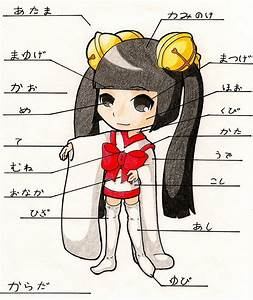 Japanese 1 Body Parts Project By Aichibiai On Deviantart