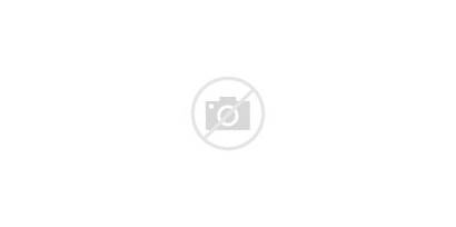 Trailer Utility Tex Clipart Axle Single 30es