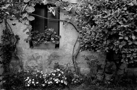 giardino nero giardino in bianco e nero