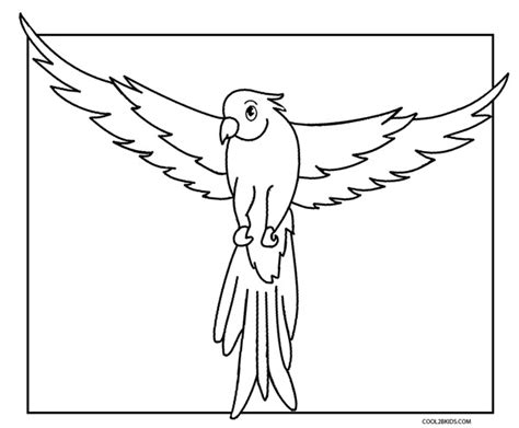 printable parrot coloring pages  kids coolbkids
