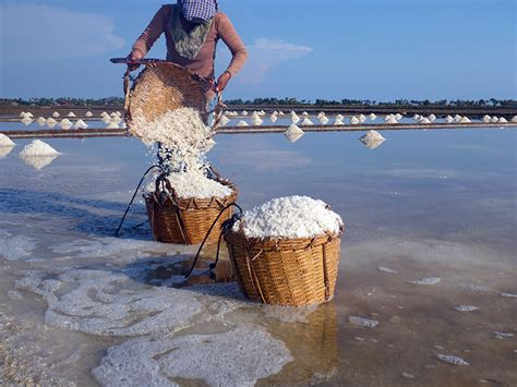 cuisiner du poisson blanc cambodge kep et ses environs the daydreameuse