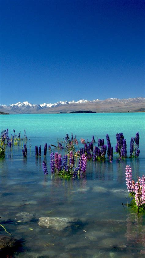 wallpaper lake tekapo  zealand mountains  nature