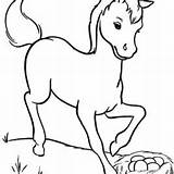 Horse Coloring Miniature Getcolorings sketch template
