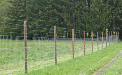 deer fences and gates deer fencing hillcrest fencing