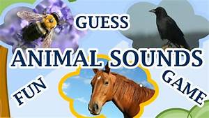 Pretty Animal Sound Matching Animals Worksheets For Kids 8 ...