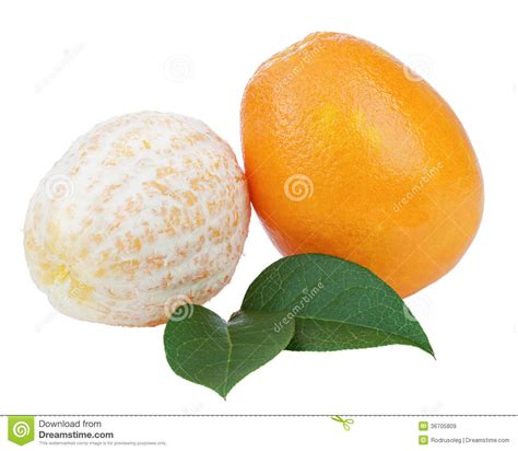 Fresh Orange Fruits With Green Leaves Isolated White