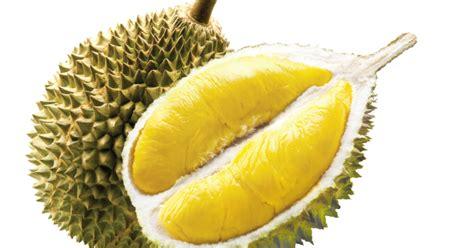 Tips Kandungan Pada Kulit Durian Bolehkan Ibu Yang Sedang Hamil Makan Buah Durian Dr Oz
