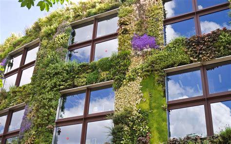 construire mur vegetal exterieur obasinc