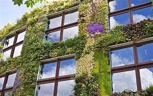 Mur Vegetal Exterieur : construire un mur v g tal ext rieur comment faire ~ Melissatoandfro.com Idées de Décoration