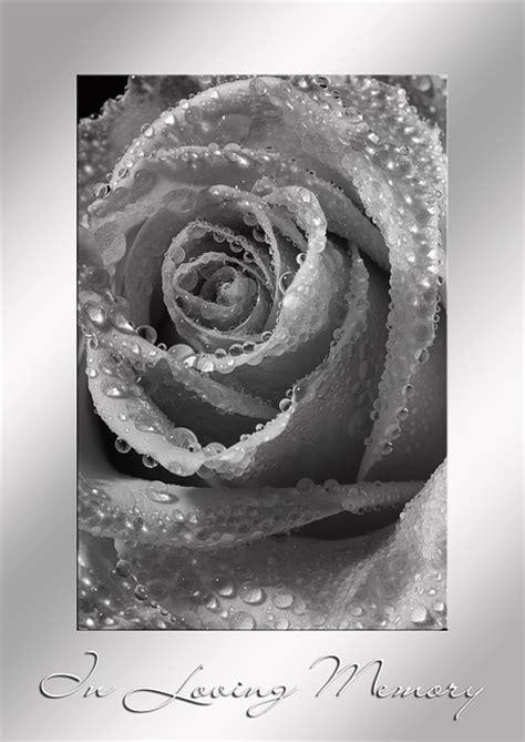 trauer tod sterben kostenloses foto auf pixabay