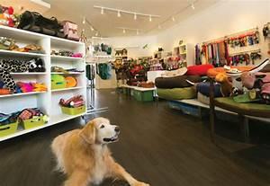 Stylish Pet Store Spotlight on Kapahulu - Honolulu
