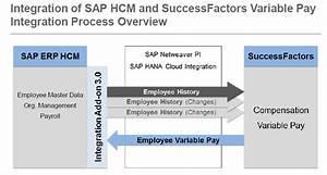 Raghav Sap Hr  Hcm  Sap Hcm Integration Successfactors Variable Pay Via Pi