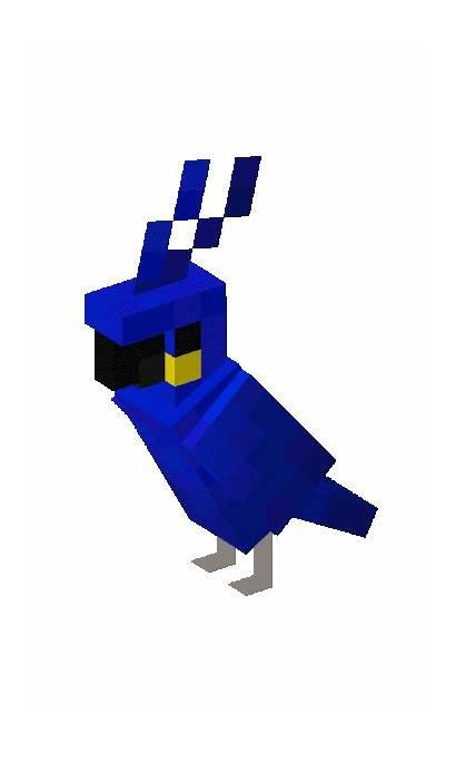 Parrots Parrot Minecraft Macaw Characters Fandom Update