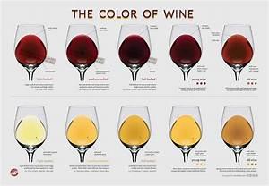 Wine Characteristics La Du Vin